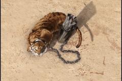 LUDUS loseta de tigre